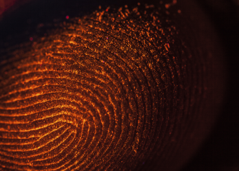Biometrics Tightens Its Grip on Chip Security